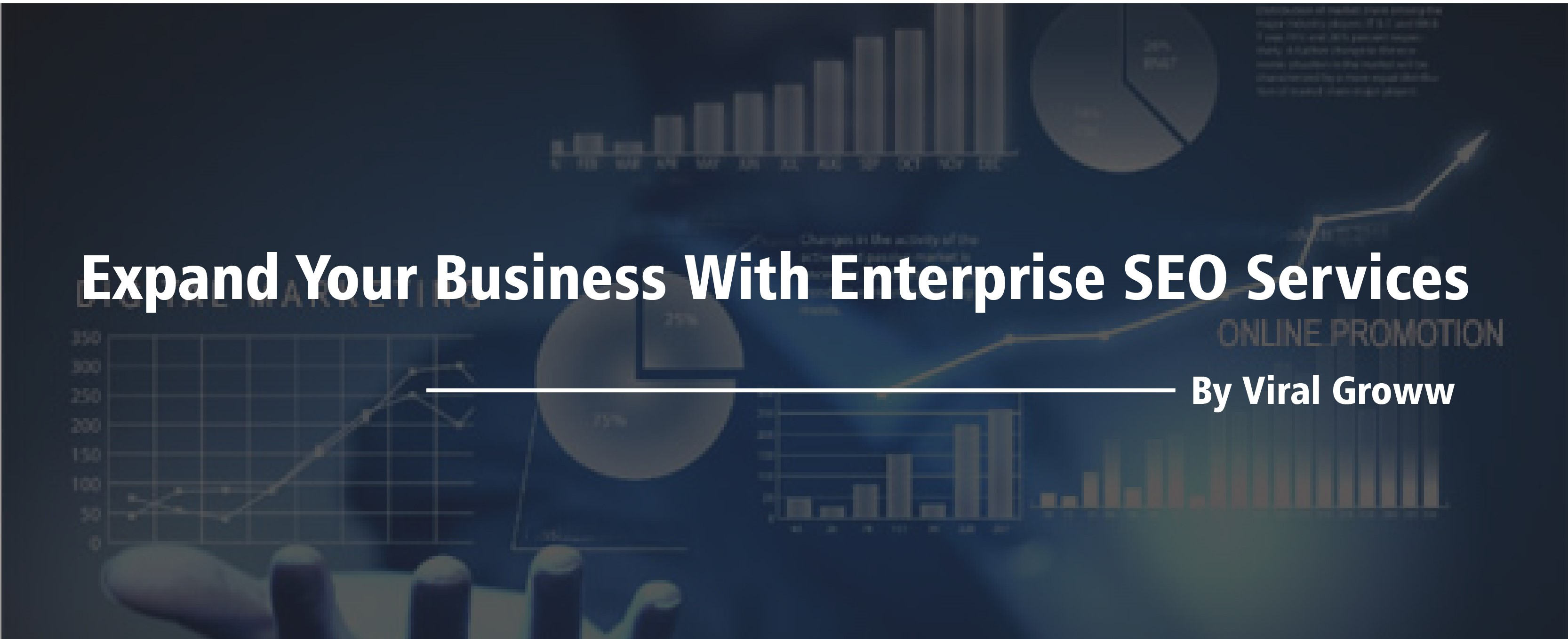 Expand your business with Enterprise SEO services